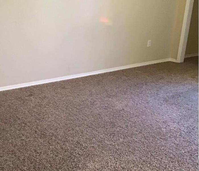 Clean and fresh carpets.